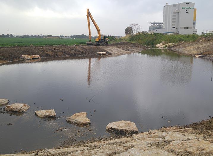 חורשת האקליפטוס פארק תעשיות עח אחרי (2)