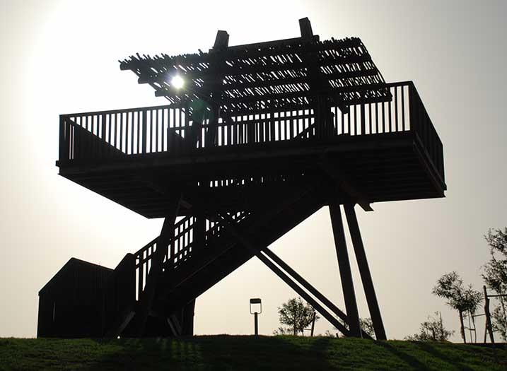 פארק גשר הצבים אחרי (1)
