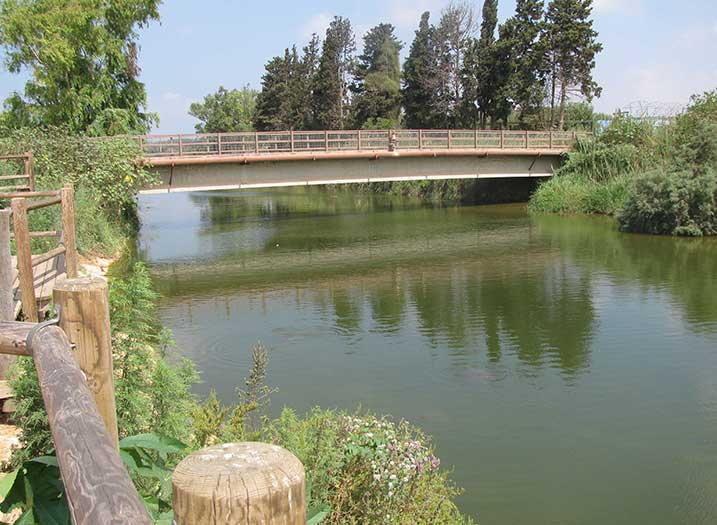 פארק גשר הצבים אחרי (3)